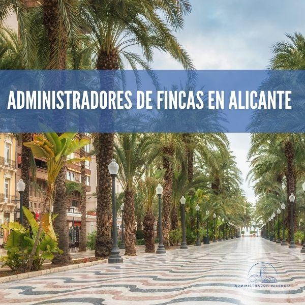 administradores de fincas Alicante